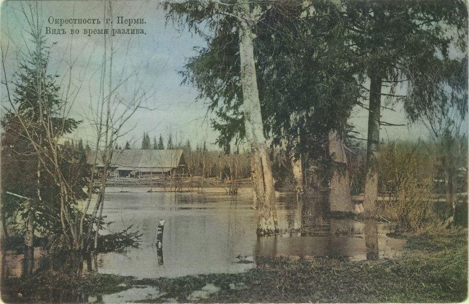 Окрестности Перми во время разлива