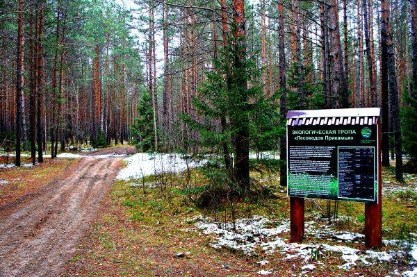 Тропа лесоводов