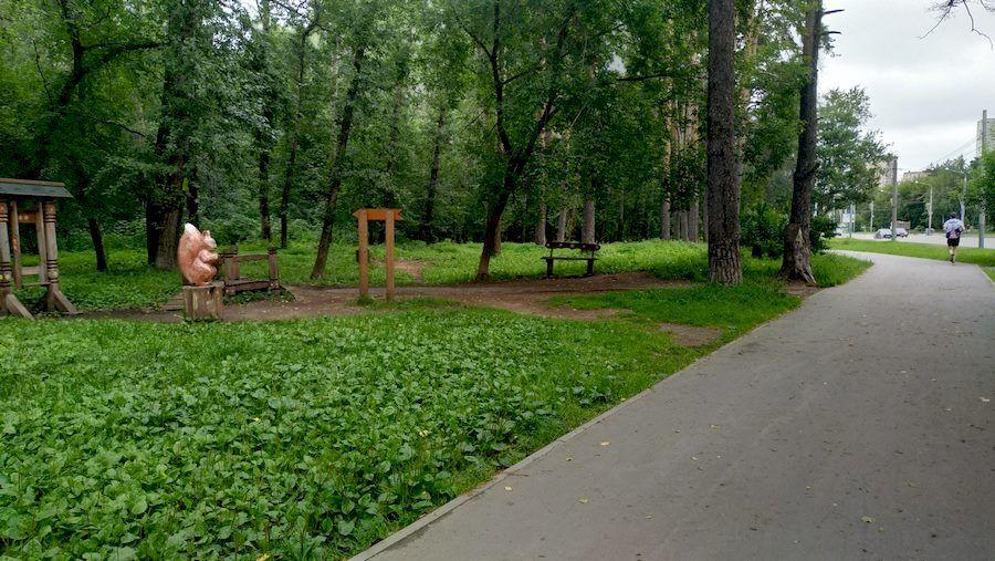 Вход в лес напротив остановки 9 мая