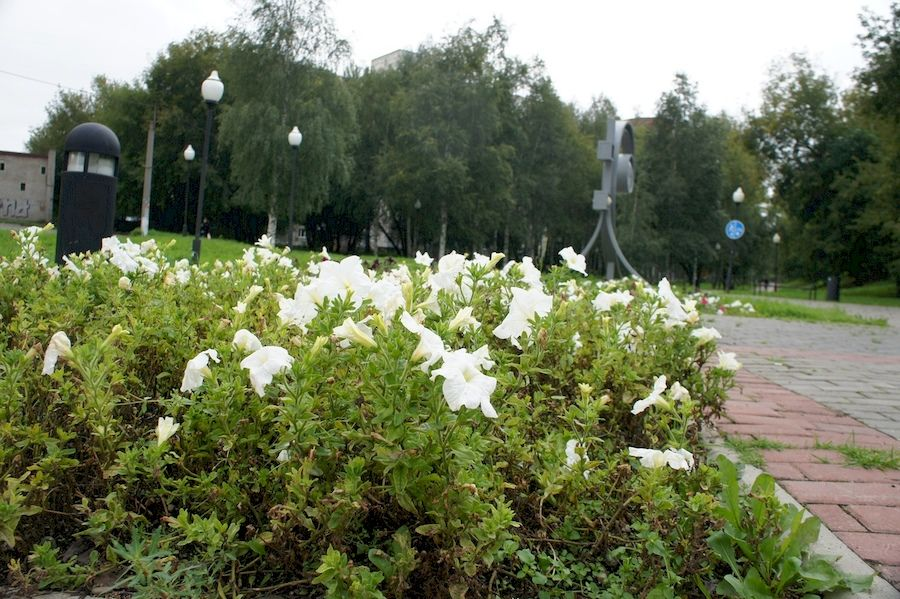 Сквер Новосёлова в Перми